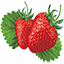 Fresh-strawberry-vector